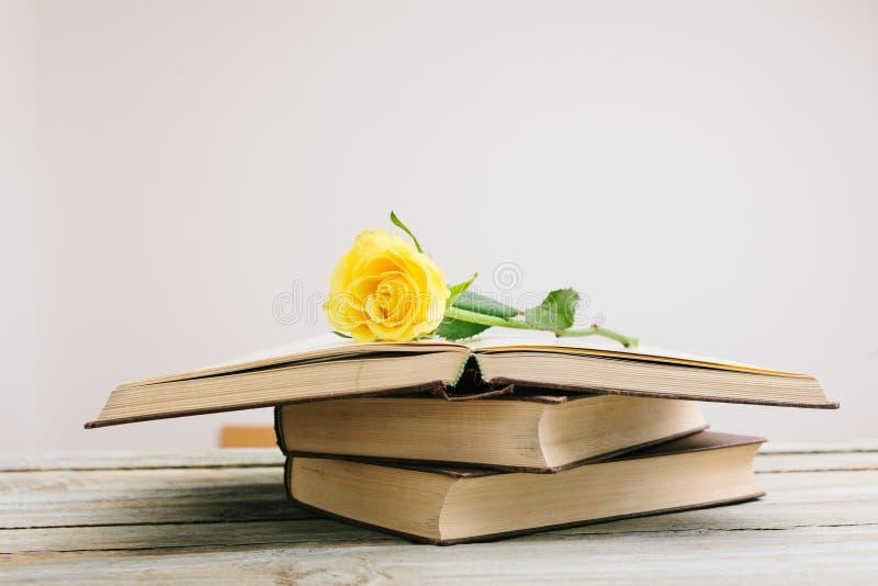 Flor em um livro na tabela fotografia de stock