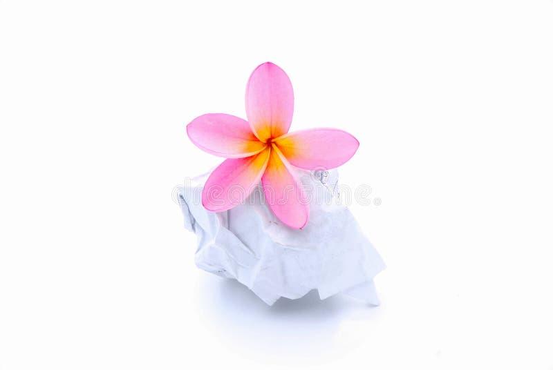 Flor en bola de papel rumpled imagen de archivo libre de regalías