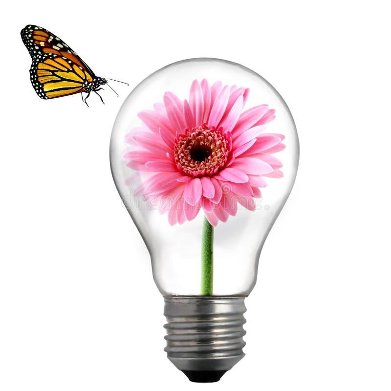 Flor en el bulbo libre illustration