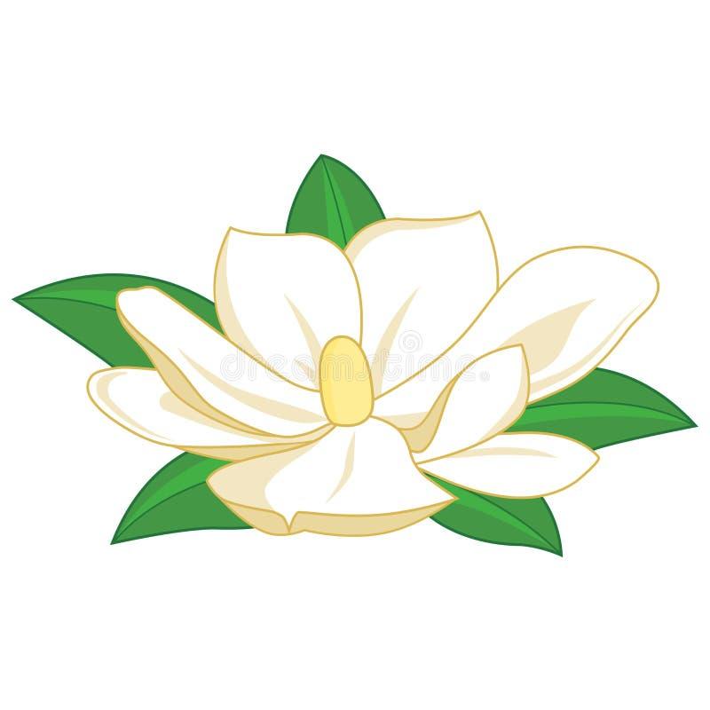 Flor en flor rosada de la magnolia stock de ilustración