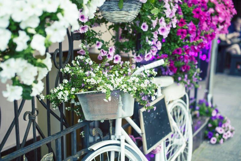 Flor en la cesta de bicicleta del vintage en la pared de madera de la casa del vintage, concepto del verano imágenes de archivo libres de regalías