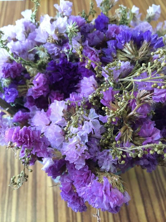 Flor encantadora imagenes de archivo
