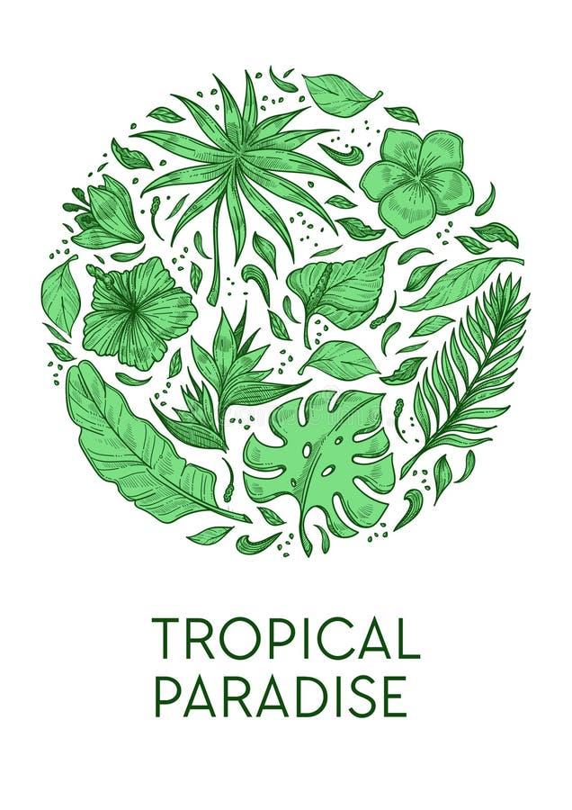 Flor exótica das folhas de palmeira e do hibiscus do molde tropical do cartaz do paraíso ilustração stock