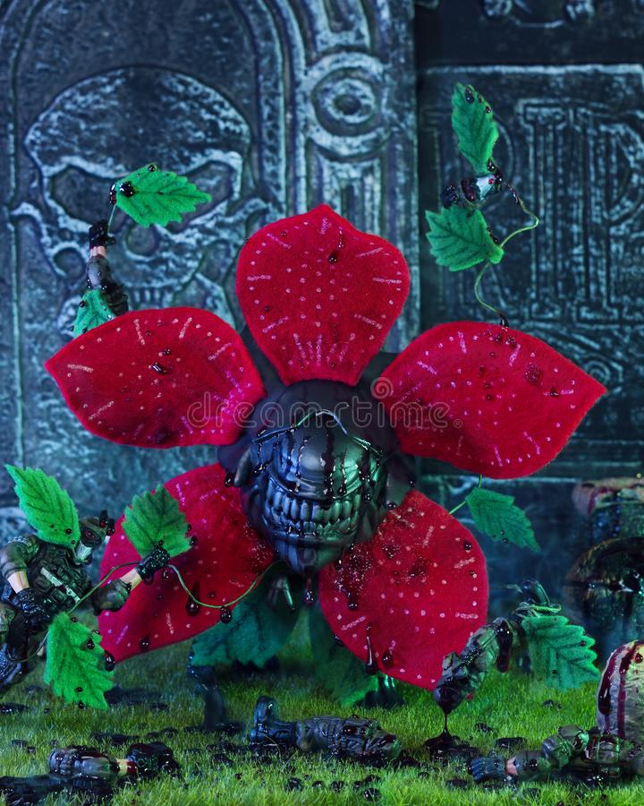 Flor extranjera imágenes de archivo libres de regalías