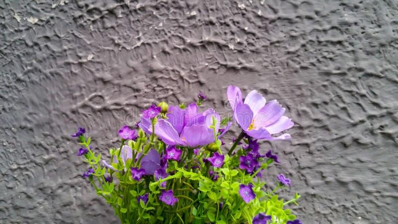 Flor falsa imagen de archivo libre de regalías