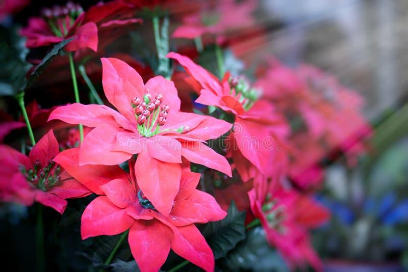 Flor falsa y fondo floral flores color de rosa hechas de tela La tela florece el ramo imagenes de archivo