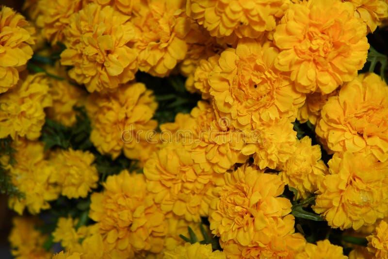 Flor falsa y fondo floral imagenes de archivo