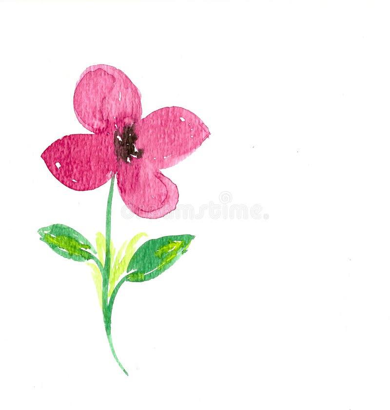 Flor feito a mão da aquarela imagens de stock royalty free