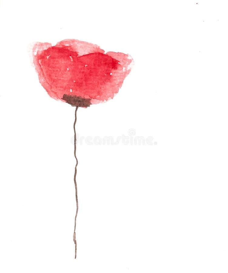 Flor feito a mão da papoila da aquarela fotografia de stock royalty free