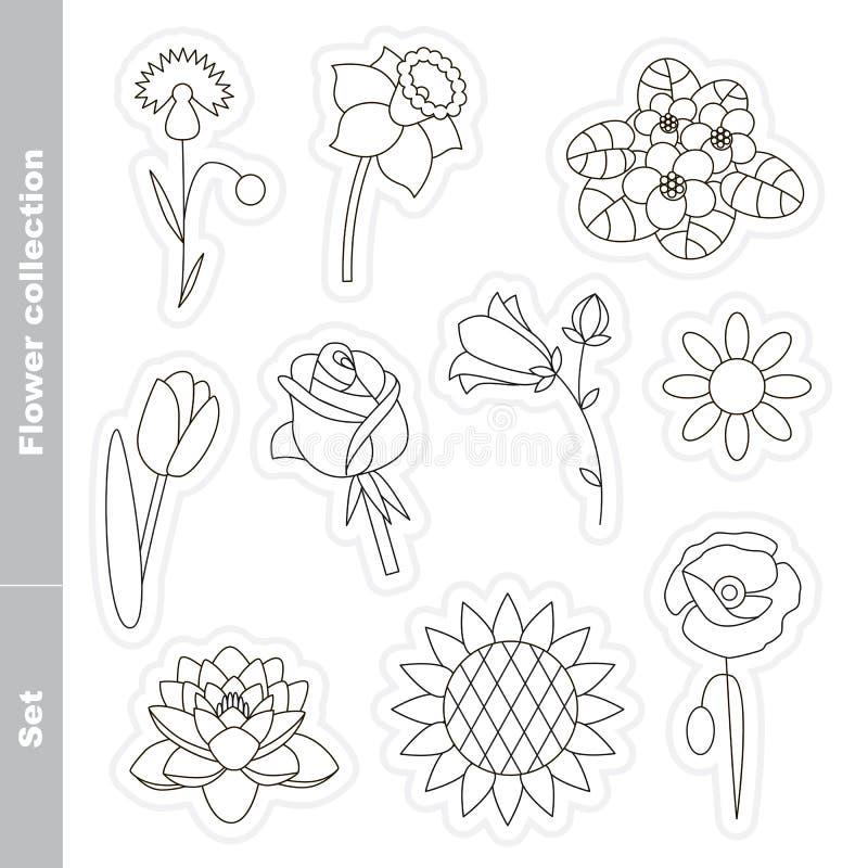 Flor fijada en vector stock de ilustración