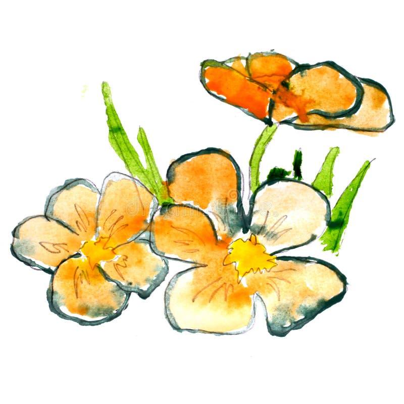 Flor floral abstrata da aguarela da grama alaranjada ilustração do vetor