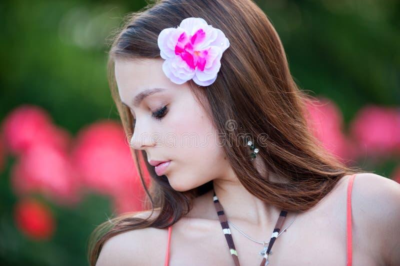 Flor floreciente imagen de archivo libre de regalías