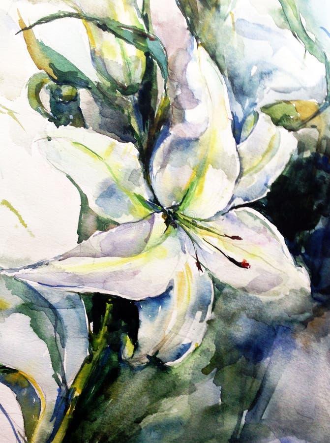 Flor fresca del lirio blanco de la luz del dalicate del extracto del fondo del arte de la acuarela sola stock de ilustración