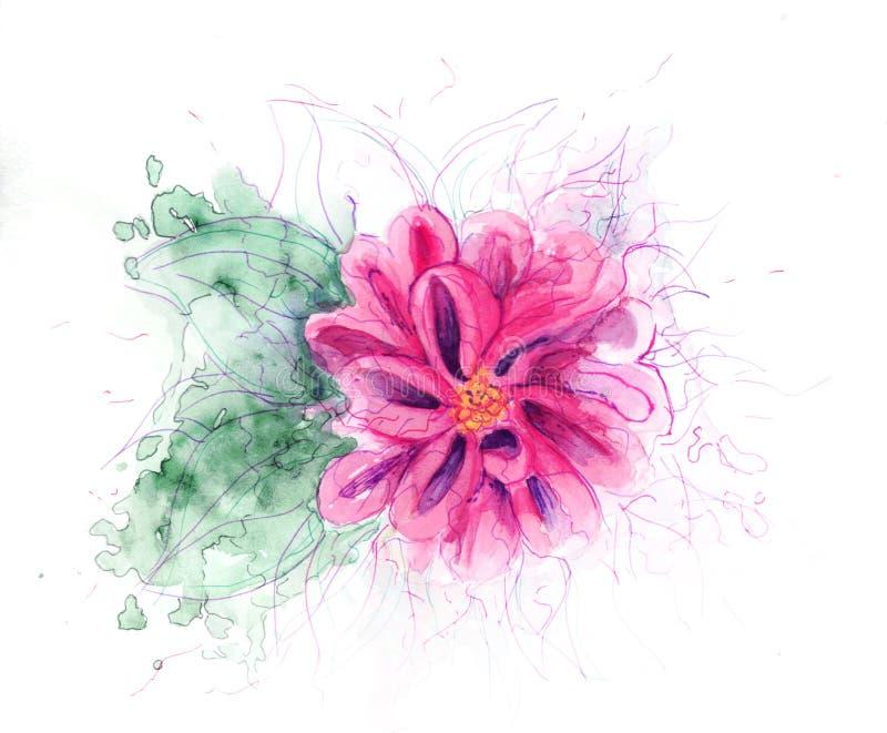 Flor fucsia ilustración del vector