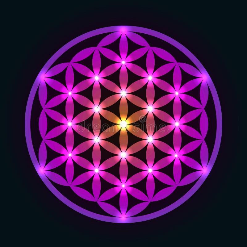 Flor geométrica que brilla intensamente de la vida stock de ilustración