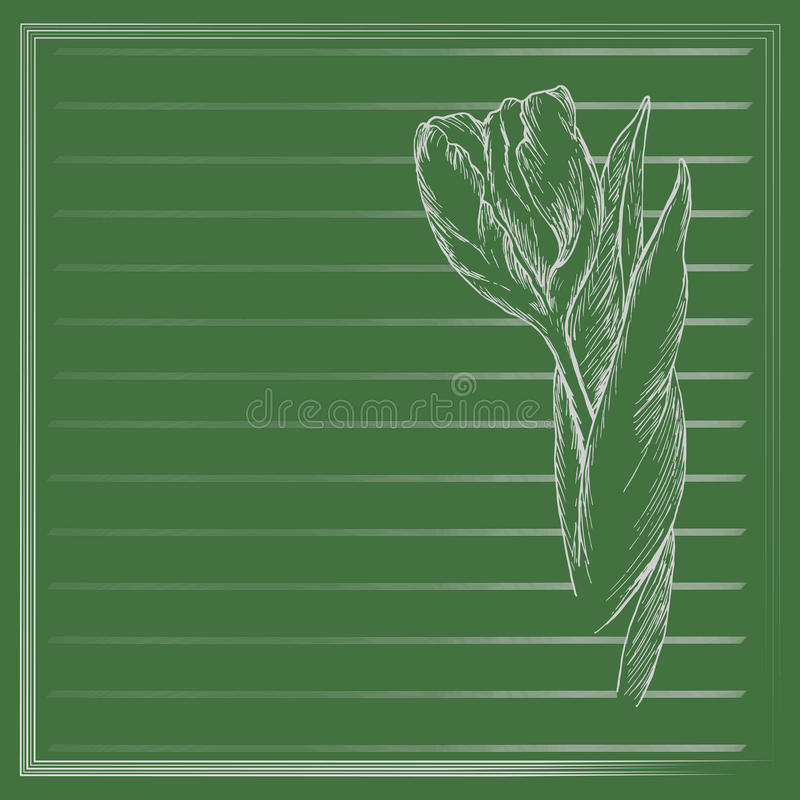 Flor gráfica, bosquejo del tulipán en fondo verde Vector la ilustración floral libre illustration