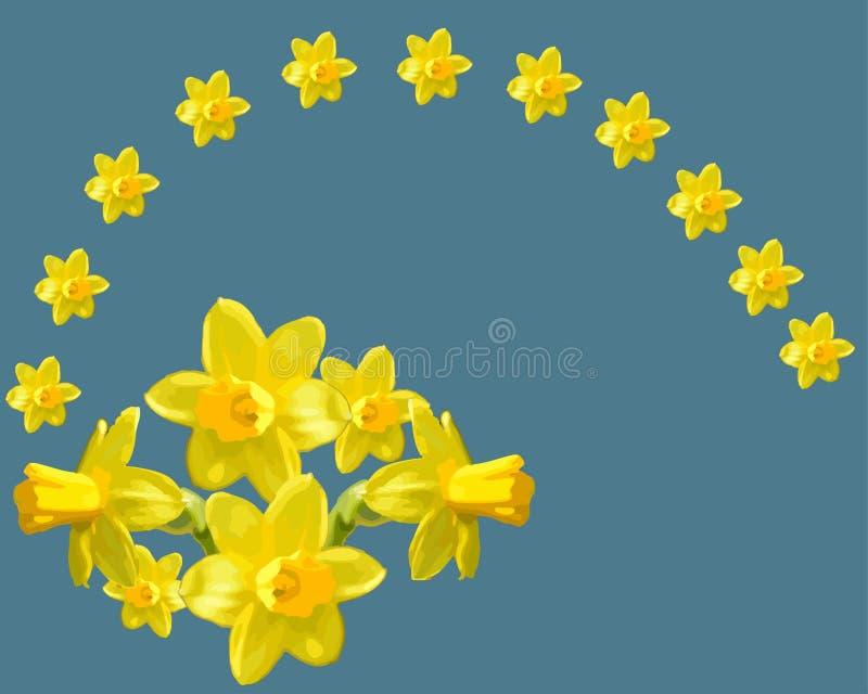 Flor hermosa, narciso fresco stock de ilustración