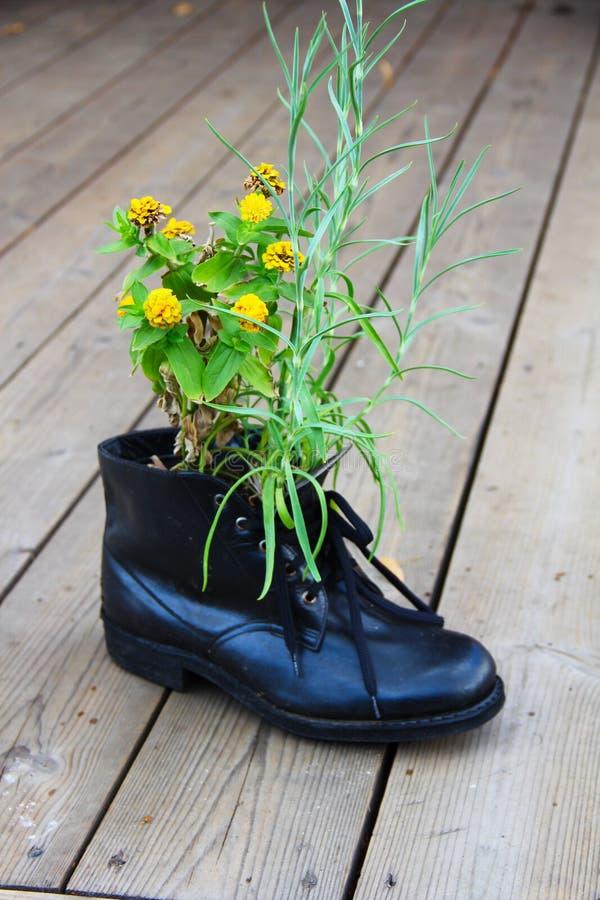 Flor na bota fotografia de stock