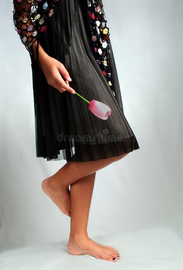 Flor negra del color de rosa de la alineada imagen de archivo