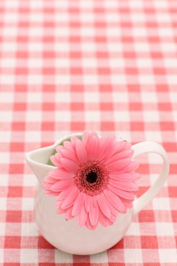 Flor no sauceboat imagem de stock