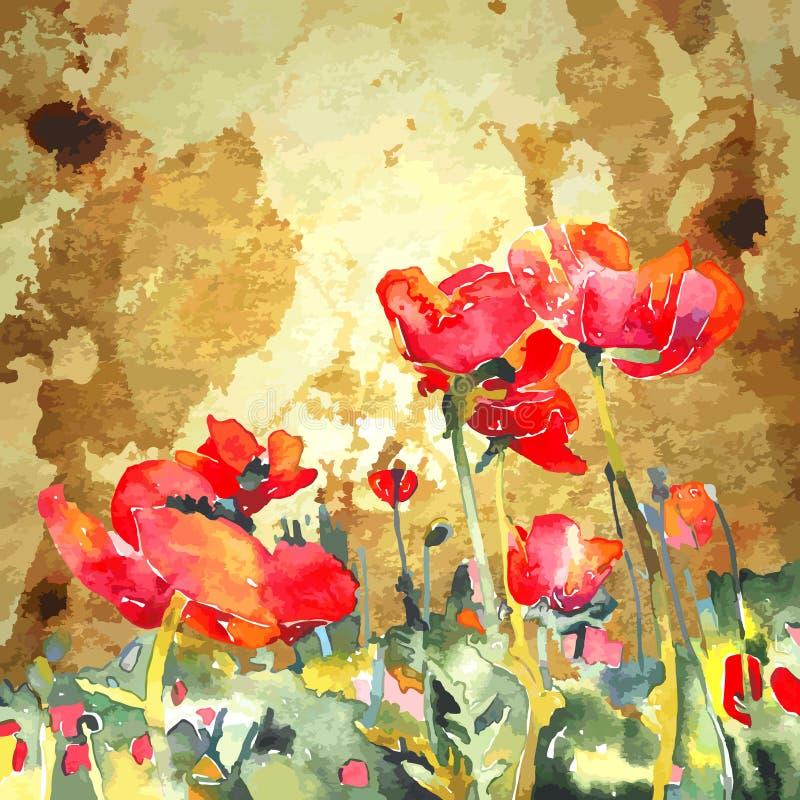 Flor original da papoila da aquarela no ouro ilustração do vetor
