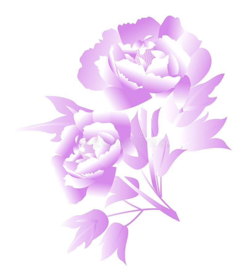 Flor púrpura del peony ilustración del vector