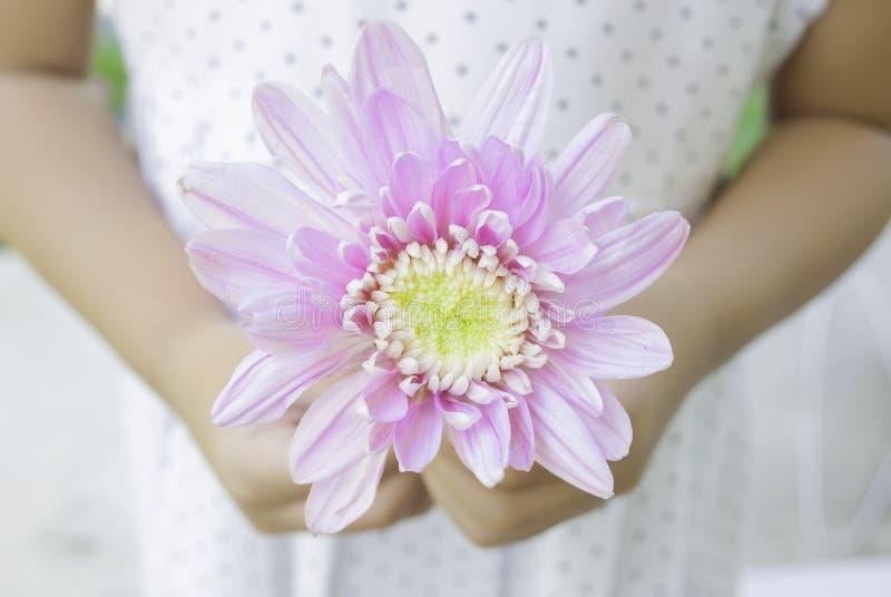 Flor para usted fotografía de archivo libre de regalías