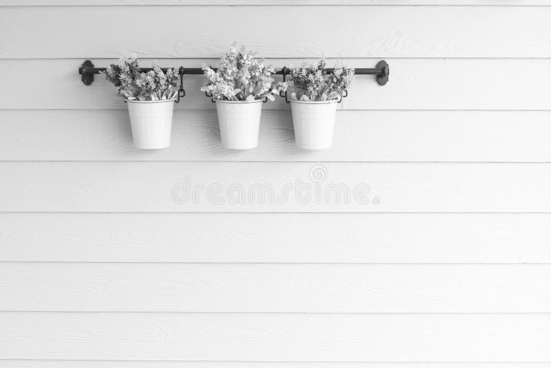 Flor pequena do potenciômetro a bordo da parede de madeira imagens de stock