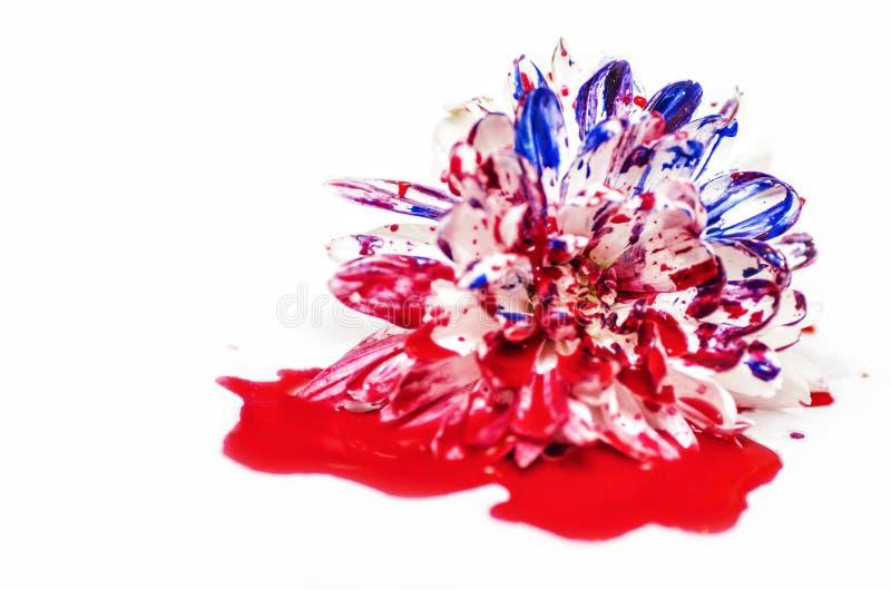 Flor pintada de sangramento foto de stock royalty free