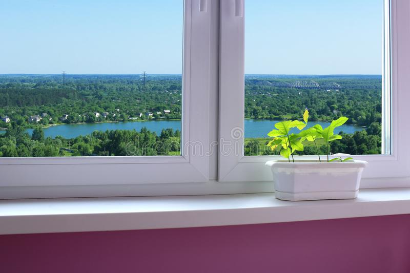Flor-potenciômetro no janela-peitoril e vista às casas de campo imagem de stock royalty free