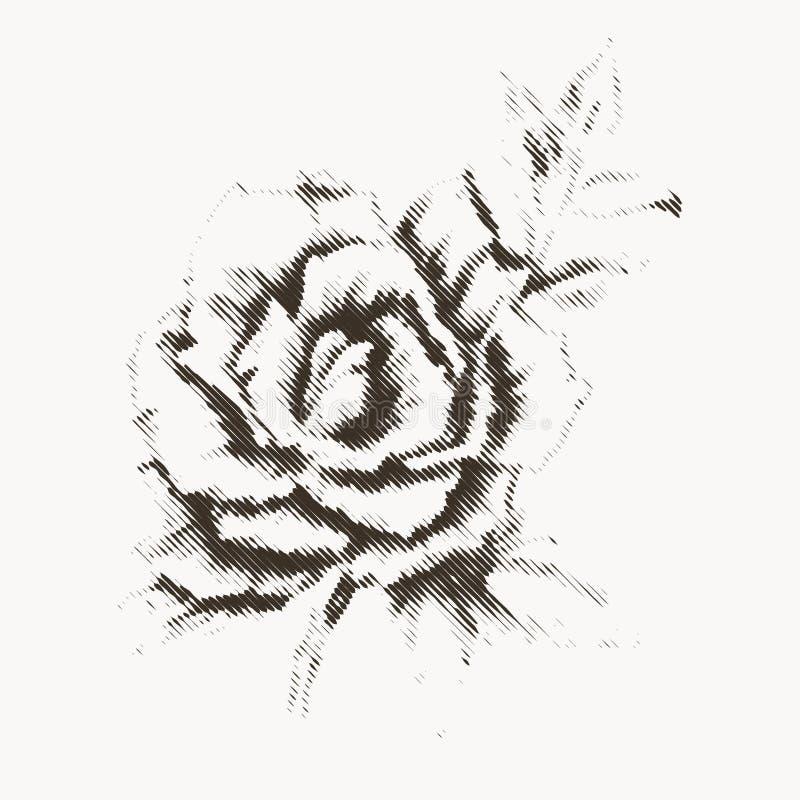 Flor que graba 3 stock de ilustración