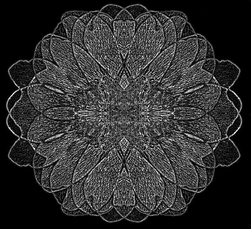 Download Flor redonda branca ilustração stock. Ilustração de sumário - 16858433