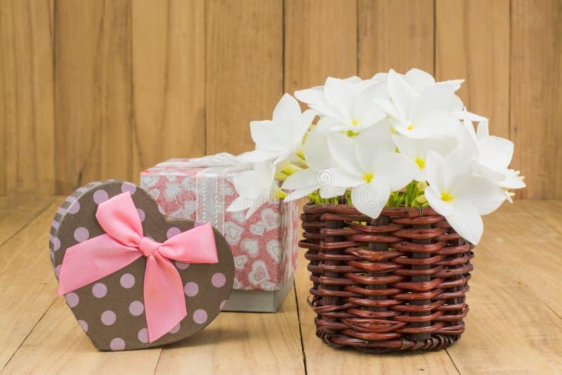 Flor roja del frangipani (plumaria) fotos de archivo libres de regalías