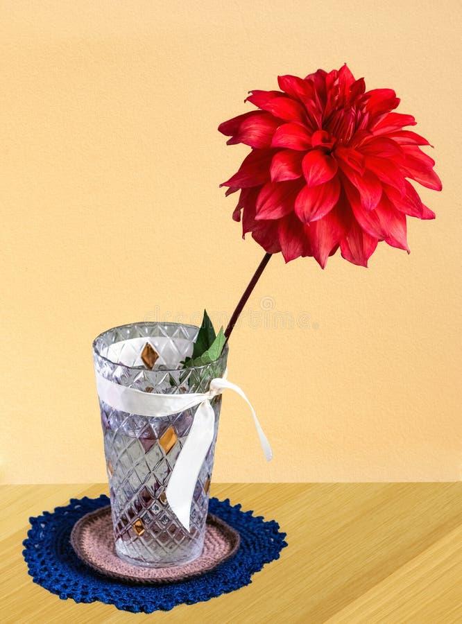 Flor roja en florero fotografía de archivo