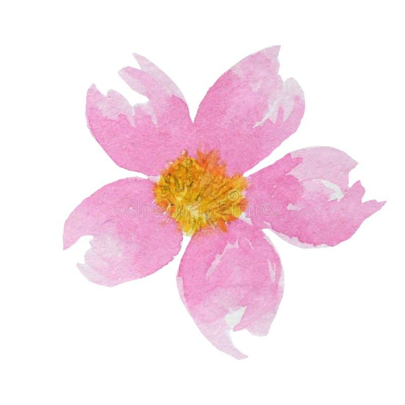 Flor rosada brillante hermosa de la acuarela Aislado en el fondo blanco ilustración del vector