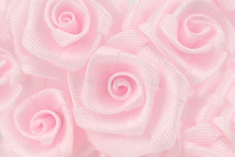 Flor rosada de las rosas foto de archivo libre de regalías