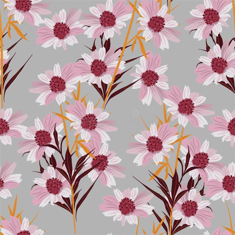 Flor rosada e florescente de margarida rosa no padrão sem costura do jardim em vetor, Design para moda, tecido, papel de parede,  ilustração stock
