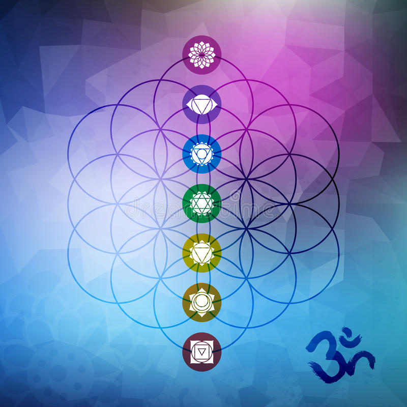 Flor sagrada de la geometría de la vida con los iconos del chakra stock de ilustración