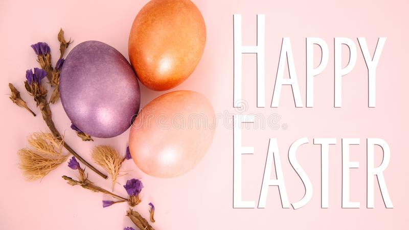 Flor seca do ovo roxo, dourado e cor-de-rosa no fundo cor-de-rosa imagem de stock