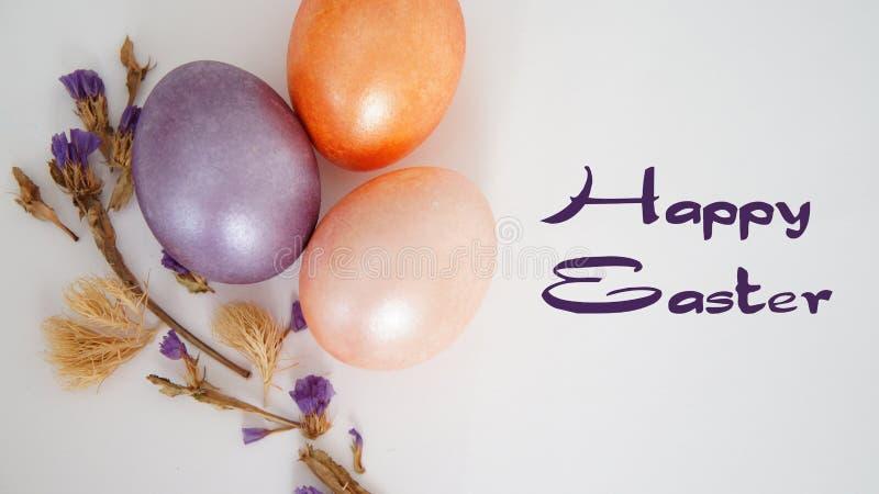 Flor seca do ovo roxo, dourado e cor-de-rosa no fundo branco fotografia de stock royalty free