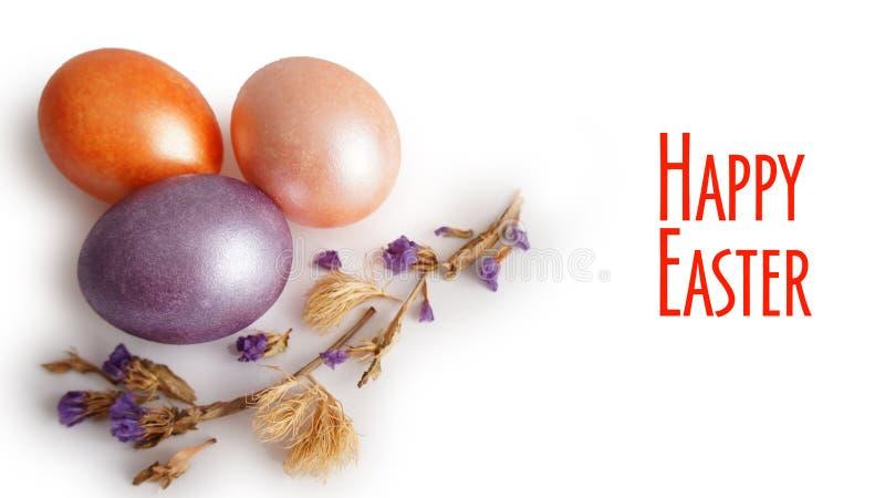 Flor seca do ovo roxo, dourado e cor-de-rosa no fundo branco foto de stock