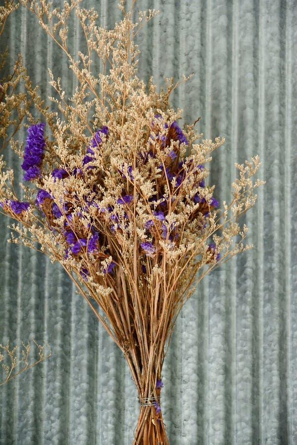 Flor seca en fondo clásico imagen de archivo