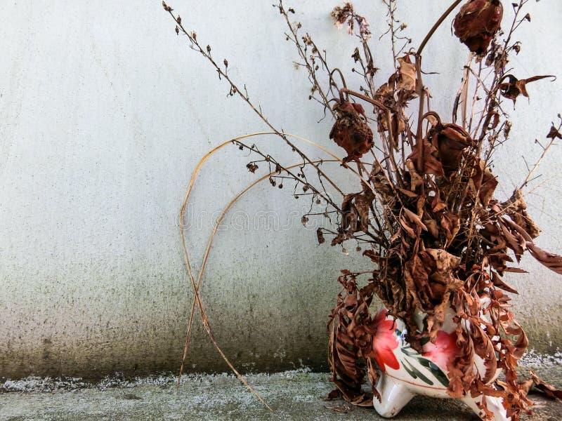 Flor secada com o vaso em Tailândia fotografia de stock