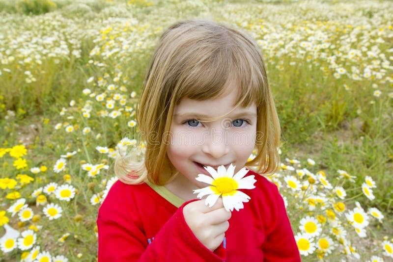 Flor smeling da mola da margarida da menina loura fotografia de stock