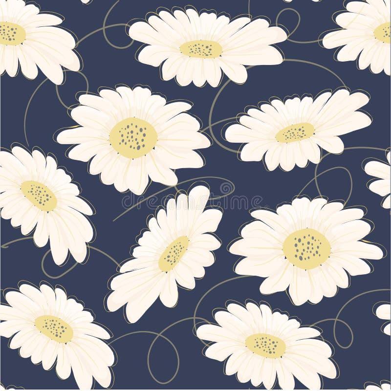 flor tirada da margarida branca do teste padrão mão sem emenda ilustração royalty free