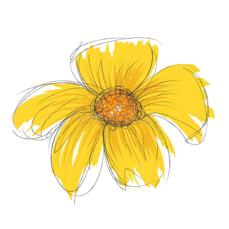 Flor tirada e pintada do vetor ilustração do vetor