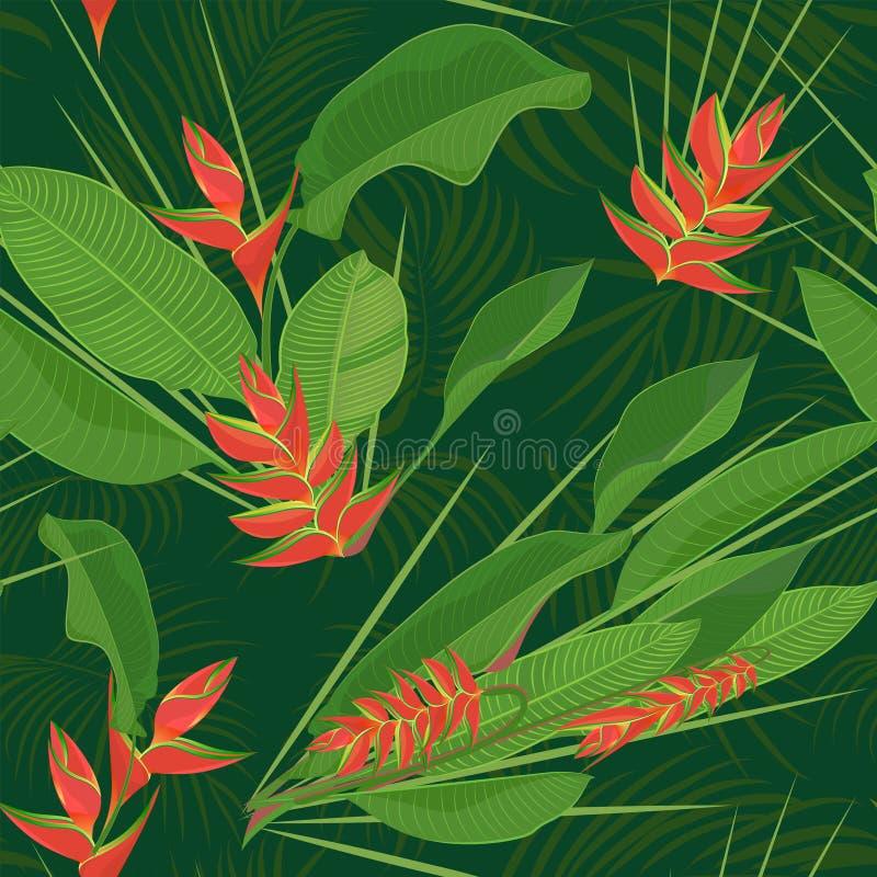 A flor tropical do heliconia do ramo sae do fundo sem emenda Desenho realístico da aquarela no estilo liso da cor isolado em b br ilustração do vetor