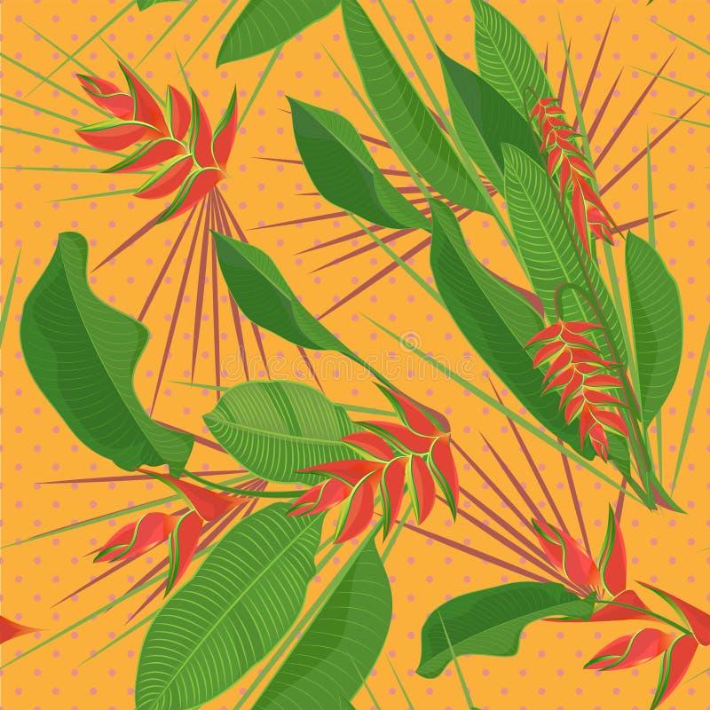 A flor tropical do heliconia do ramo sae do fundo sem emenda Desenho realístico da aquarela no estilo liso da cor isolado em b br ilustração stock
