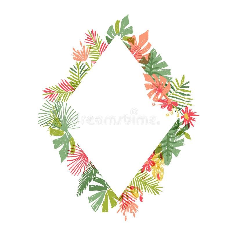 Flor tropical tirada mão, quadro do rombo ilustração do vetor
