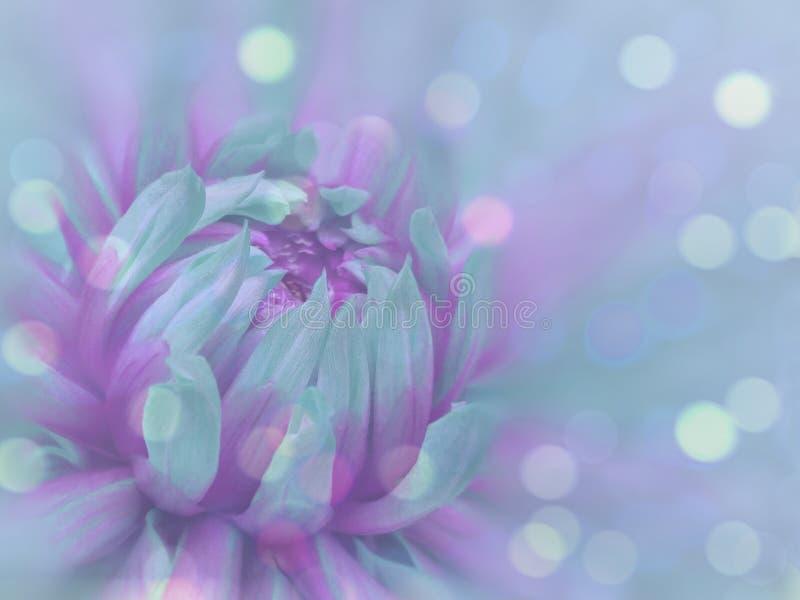 a flor Turquesa-roxa no azul transparente borrou o fundo Close-up Composição floral Fundo floral fotos de stock royalty free